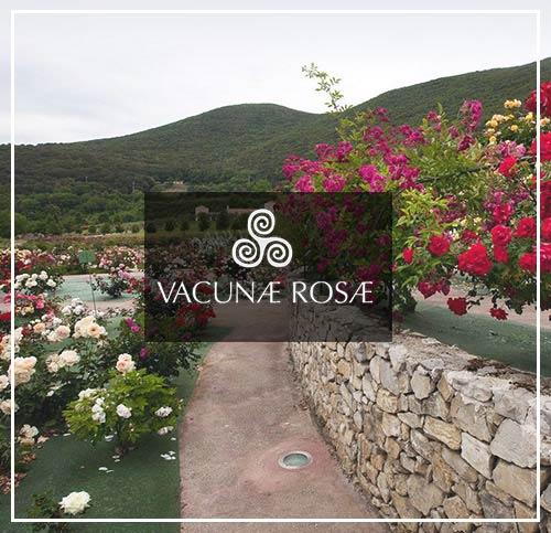 banner-roseto-vacunae-rosae-rid